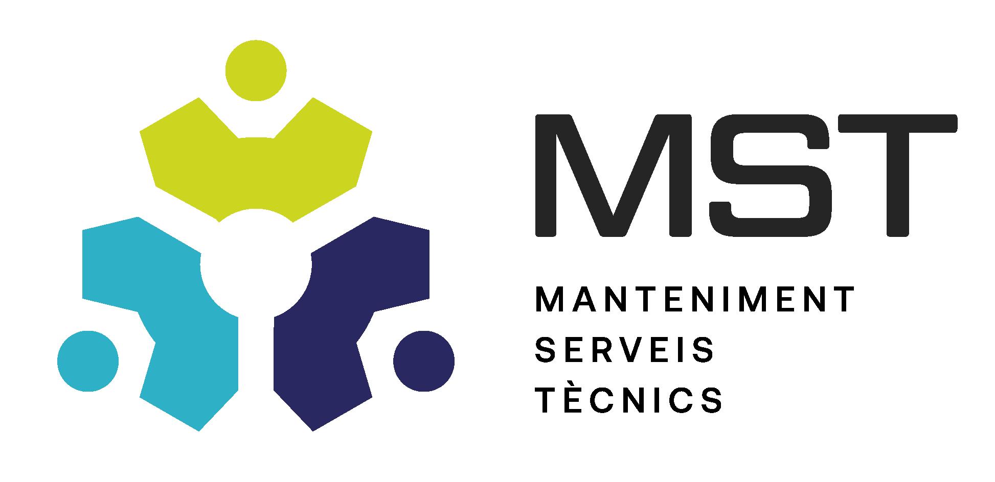 Web de MST